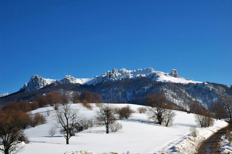 stara_planina15